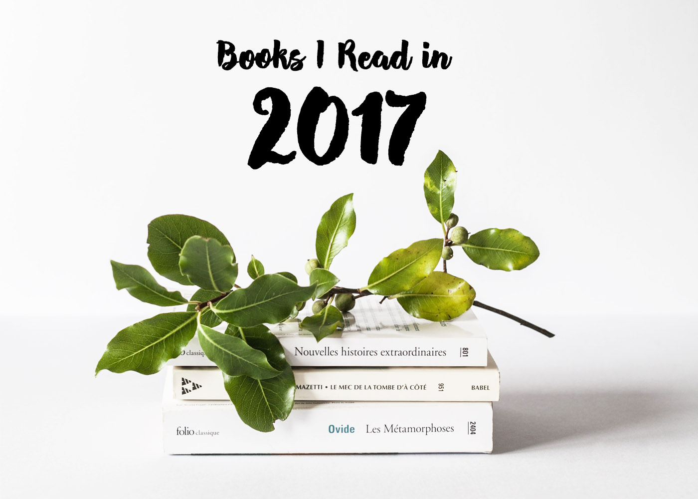 books-i-red-in-2017